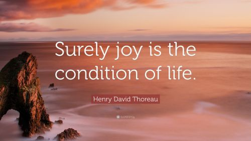 5029735-Henry-David-Thoreau-Quote-Surely-joy-is-the-condition-of-life.jpg